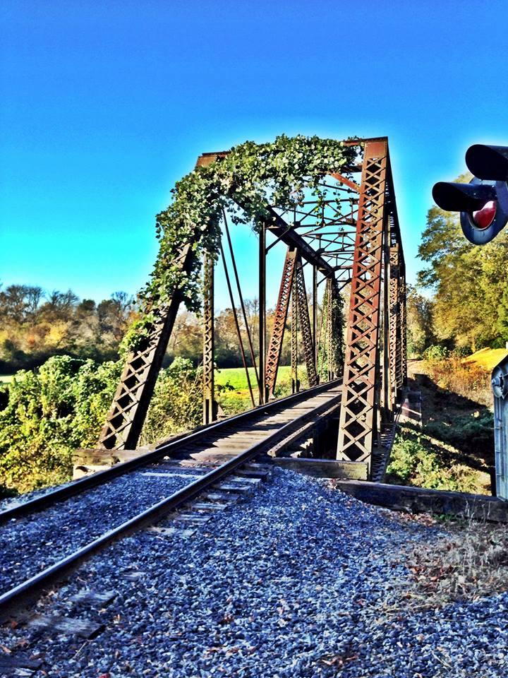 train, elkin